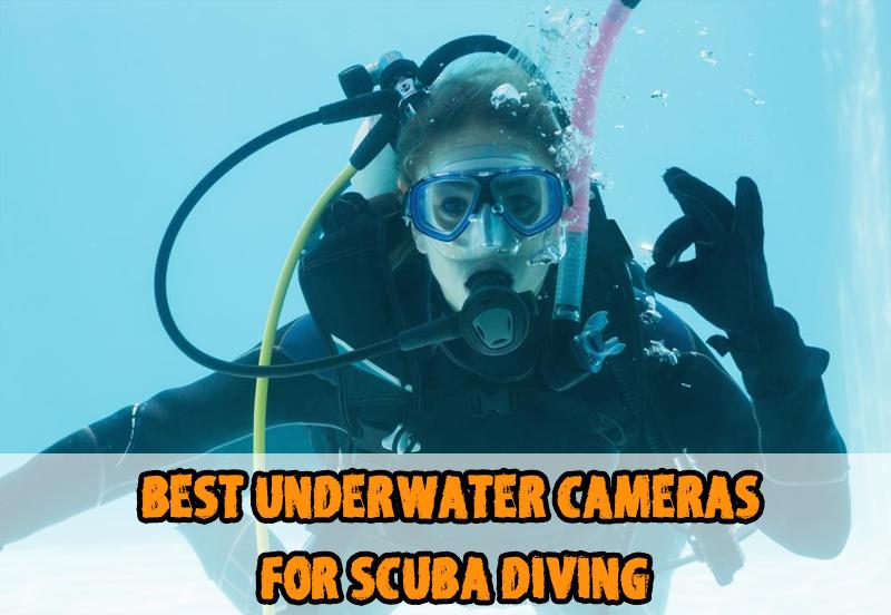 Best Underwater Cameras for Scuba Diving