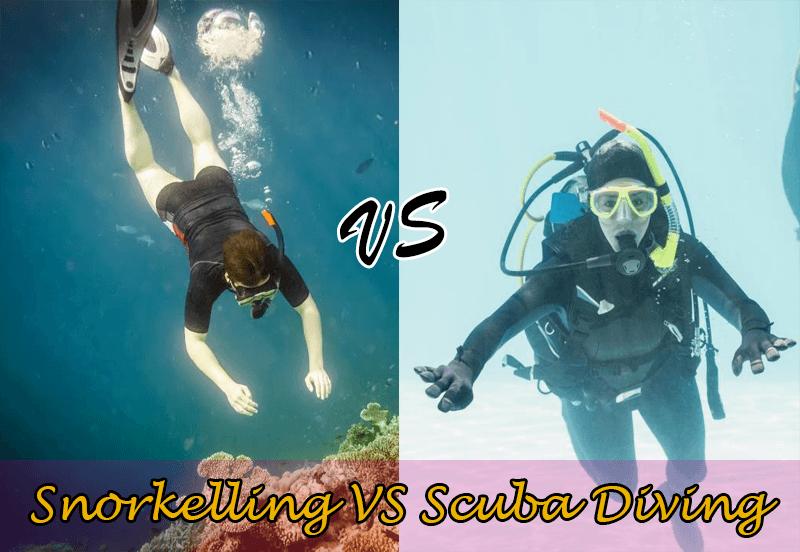 Snorkelling Vs Scuba Diving