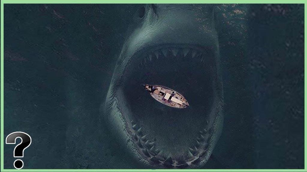 ocean danger